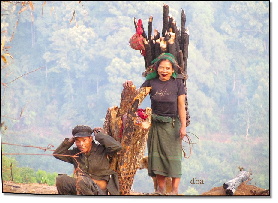Villagers collecting wood high in the mountains  Phongsali province