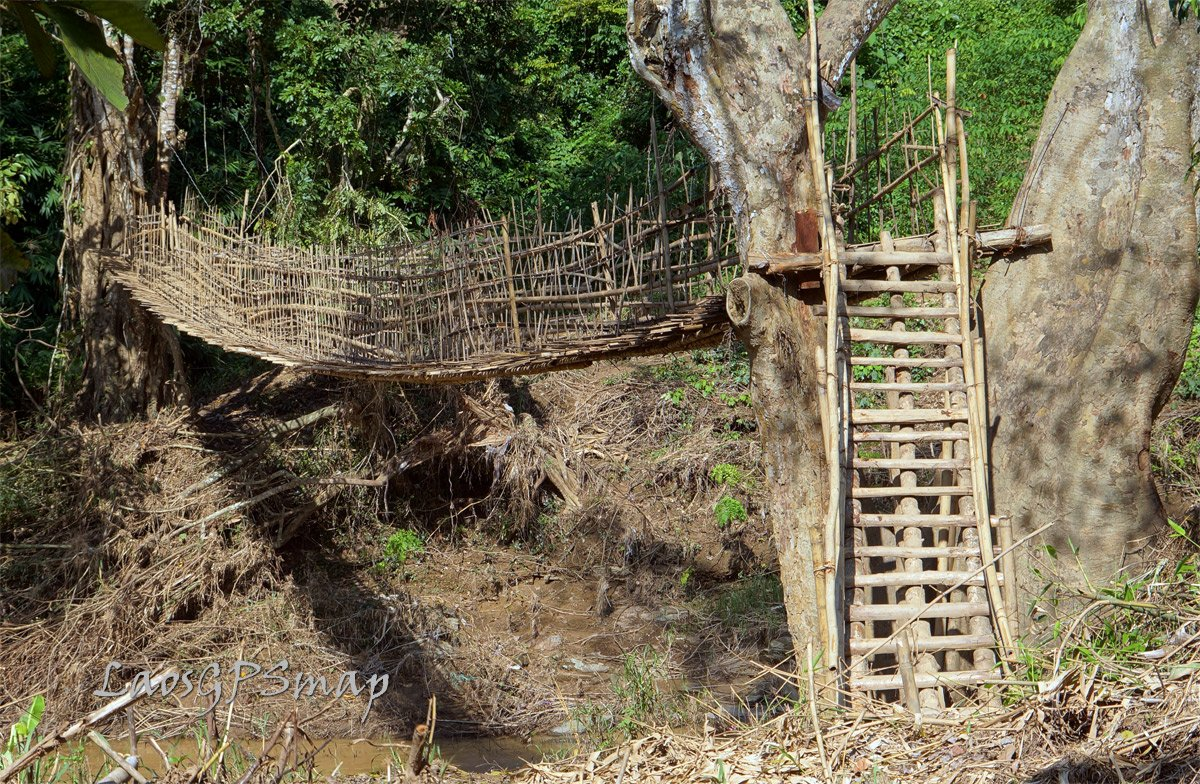 Nam-Pa-bamboo-bridge