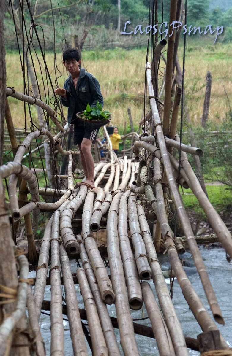 Bamboo bridge crossing a river Southern Houaphan province